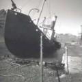scia-balena
